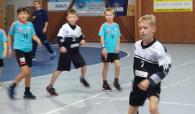 Turnaj starších minižáků v Hranicích 22.10.2017